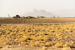 Cultures au seuil du désert
